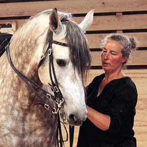 Aviva Steenbergen, Gîtes et École d'équitation du Pont de Calmel