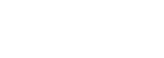 Logo Dream Wild