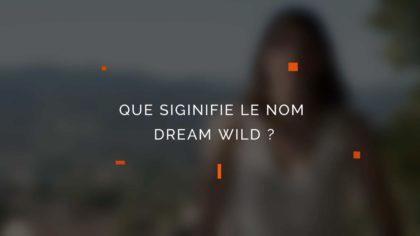 Que signifie le nom Dream Wild